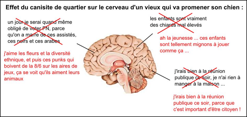 deuxdegres_bien-vivre-ensemble_mixité-et-canisite_cerveau-de-vieux